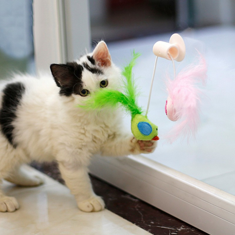 Interative Cat Bird Playing Toy Teaser Wand Sucker Window Cat toy Plastic Teaser Interactive Feather Toy 26*14cm