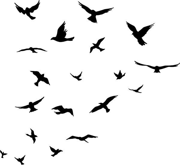 JJRUI bandada de pájaros volando habitación decoración etiqueta de - Decoración del hogar - foto 3