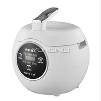 Household Rice Cooker Intelligent Electric Rice Cooker 220V Healthy Kitchen Appliances