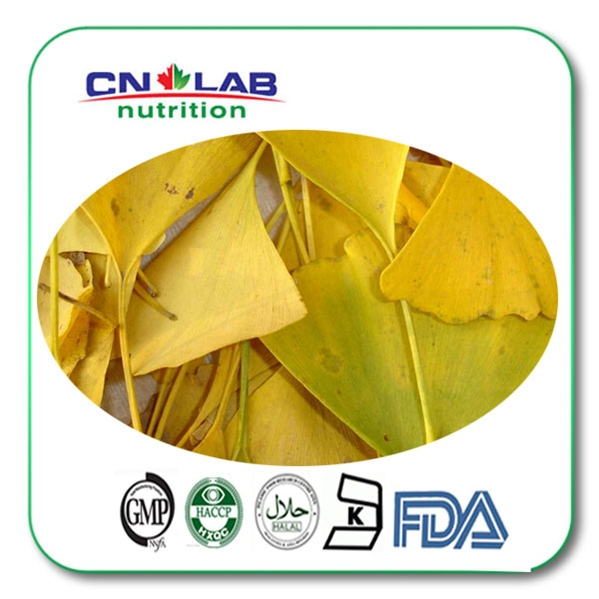 200g/lot Hot Selling Anti-aging Supplement Ginkgo Leaf Biloba Extract Powder 24%