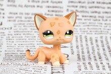 New pet Genuine Original LPS #1120 Orange Spotted Leopard Cheetah Cat Green Eyes figure Toys