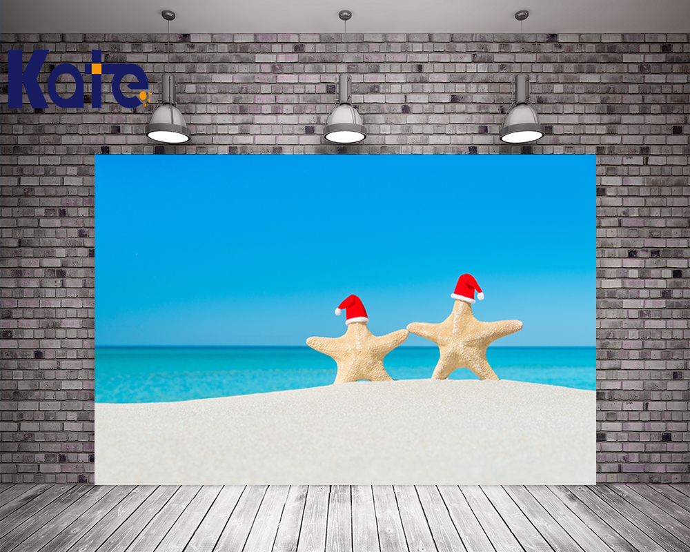 Kate Digital Printing Christmas Backdrop Photography Blue Sky Beach Background For Children Photo Background blue sky чаша северный олень