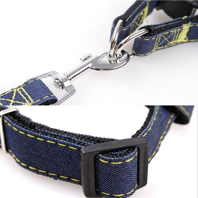Leash Set Adjustable Harness