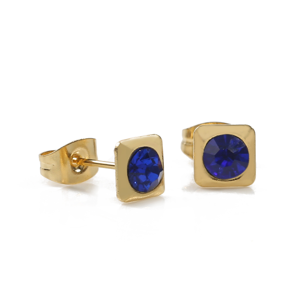 TL Dark Blue Zircon Earrings for Women Stainless Steel Natural Stone Hoop Earrings Gold Wedding Earrings