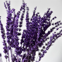 100 140pcs/Bundle Dried Lavender Flower Wedding Party Photo Props Pure natural plant Dried Flowers Cafe Library Home decoration
