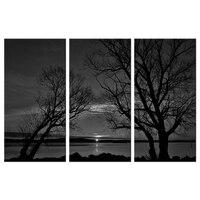 3 Unidades de Pared de la Lona Print Art Sunset Paisaje Pictures Cartel Grandes Ramas Del Árbol Pintura Moderna Ilustraciones en Blanco Y Negro