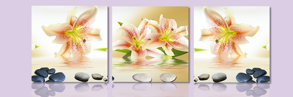 Aliexpress.com : Buy Free shipping Lily shadow of flowers Modern ...