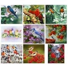 diamond embroidery birds,daimond painting animals,rhinestone pictures,diamond bird