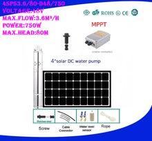 Bomba de agua Solar DC48v 750w para riego agrícola de jardín, 3 años de garantía, 4SPS3.6/80-D48/750