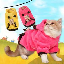 Warm Sphynx cat sweater, perfect for winter