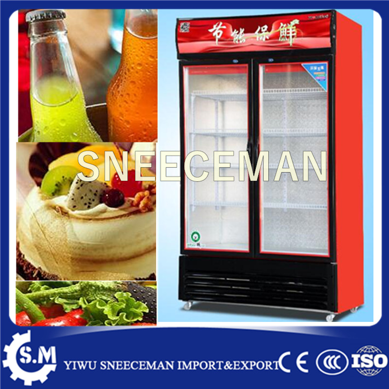 Double doors Upright Beverage direct cooling Vertical Cabinet for Cooler
