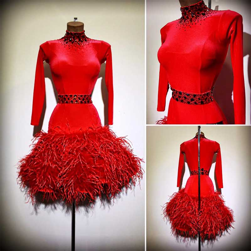 New Latin Dance Dress Women Longsleeve Feather Latin Dance Dress Hight Collar Ballroom Dance Dress Custom-made Handmade