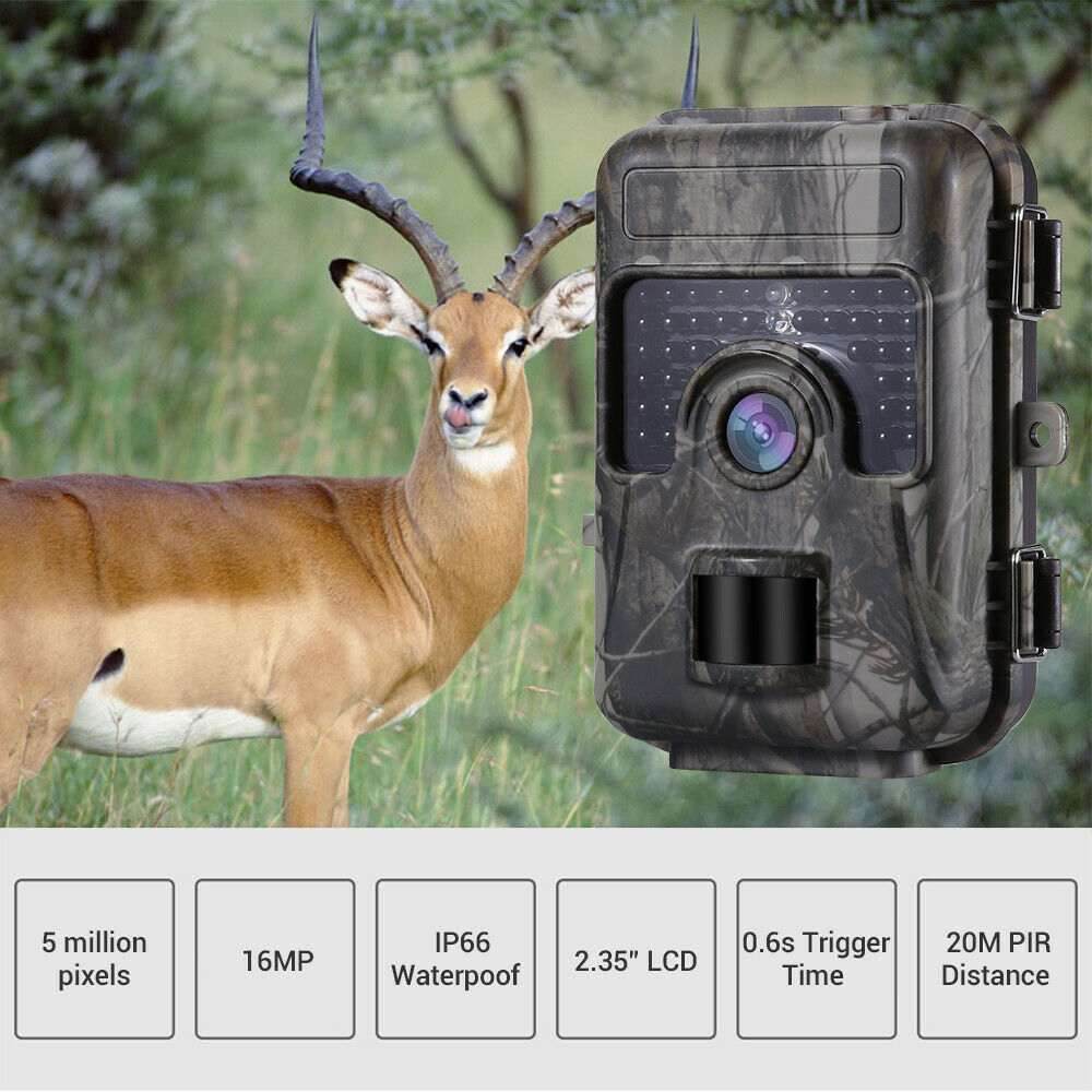 1080P 16MP HD Trail Hunting Camera Farm Wlidlife Scout Infrared Night Vsion LED CAM Motion Detection IP66-in Hunting Cameras from Sports & Entertainment