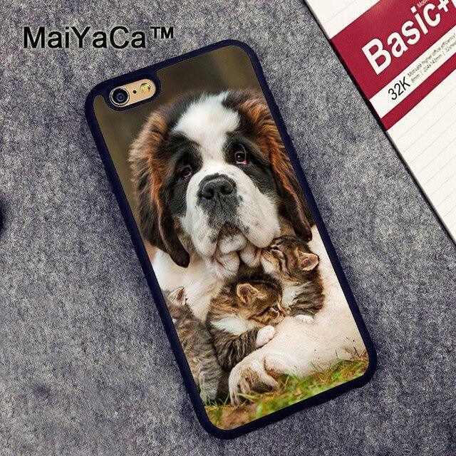 coque saint-bernard iphone 7