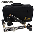 ABS 17 Key bB Flat Clarinet Soprano Binocular Clarinet with Cleaning Cloth Gloves Screwdriver Reed Case Woodwind Instrument
