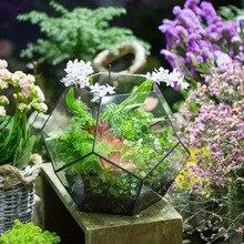 Handmade Bonsai Polyhedron Glass Geometric Terrarium Box Tabletop Succulents Fern Moss Plants Box Planter Extra Large