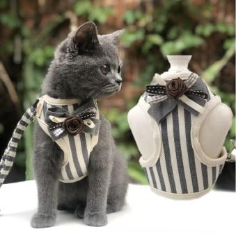 Cute Cat Harness Leash