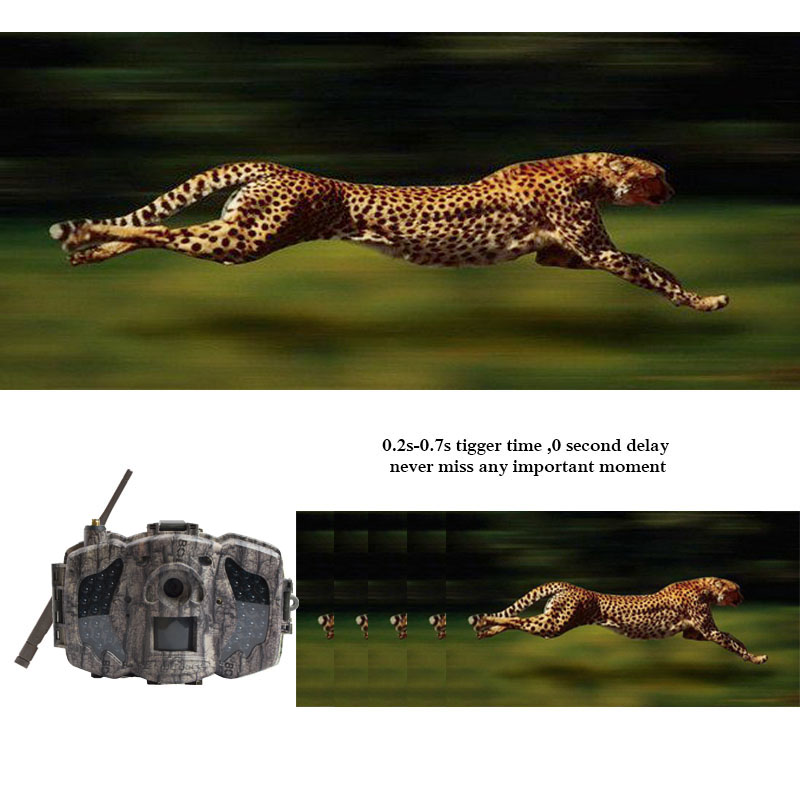 Image 4 - Bolyguard 3G Hunting Trail game Camera 36MP 1080PH Wireless Photo Trap Camera 100ft SMS MMS GPRS wild camera chass thermal image-in Hunting Cameras from Sports & Entertainment