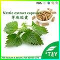 Fonte da fábrica 100% Natural Extrato de Raiz de Urtiga Orgânicos cápsulas de 500 mg * 400 pcs/lot
