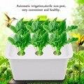 6 отверстий 220 В/110 в растительный участок гидропонная система Крытый сад Шкатулка-комод Набор для выращивания пузырьков садовые горшки план...