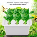 6 穴 220 V/110 V 植物サイト水耕システム屋内庭園キャビネットボックスキットバブルガーデンポットプランター保育園ポット