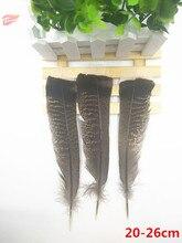 Hot 50st / sällsynt naturlig vildkalkong svansfjäder 8-10 tum / 20-26 cm DIY dekoration / samling / fjäder tillbehör