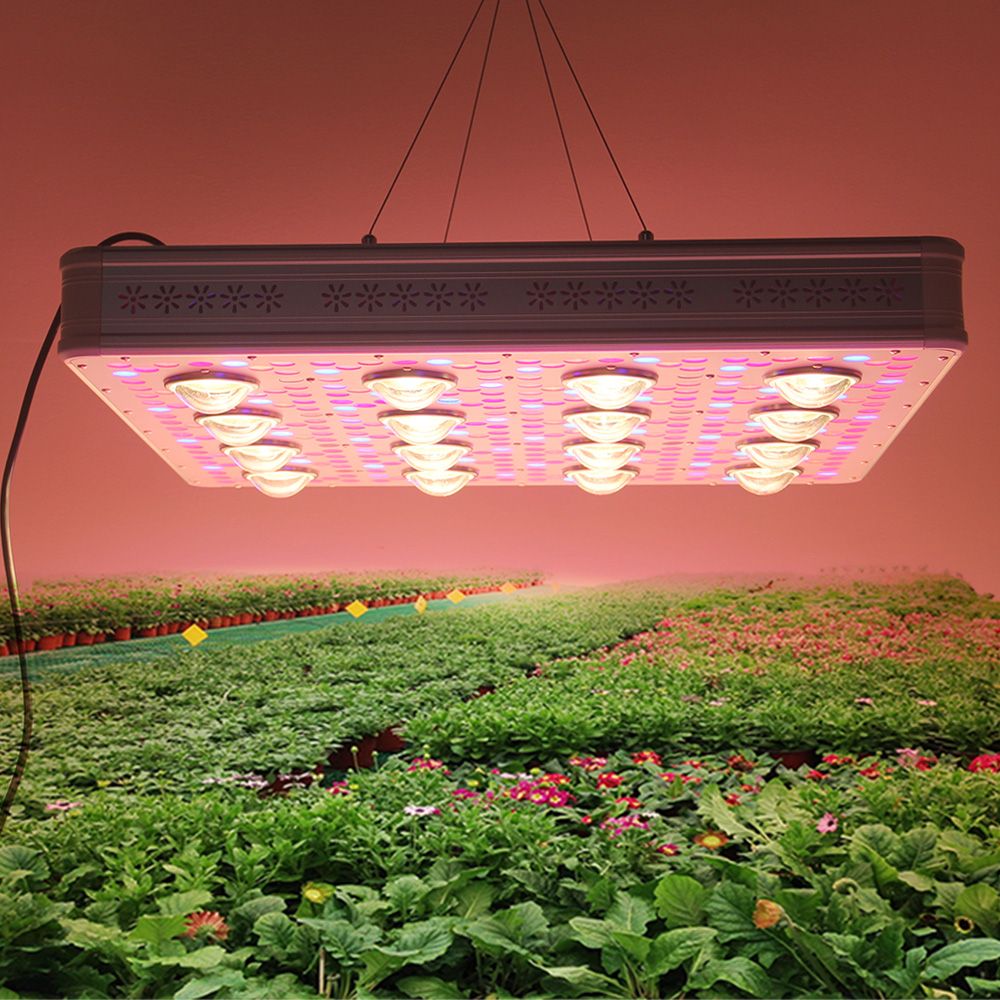 2019 New 1200w Etl Rohs Certificate Dual Switch Full Spectrum Led Plant Grow Lights For Hydroponic Plant Grow