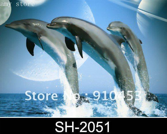 Free shipping.Decorative picture,3d picture,58C HD PET 50*70.50PCS/lot