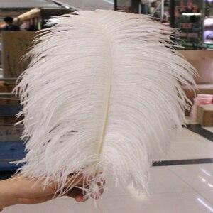 Image 1 - Neqw 10 pcs 아름다운 자연 흰색 타조 깃털 도매 50 ~ 55 cm/20 ~ 22 인치 깃털