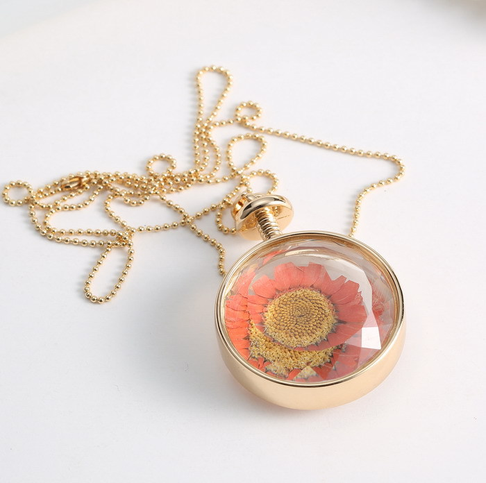 5pcs fine jewelry dry flowers round glass pendant necklace gold 5pcs fine jewelry dry flowers round glass pendant necklace gold color long chain necklace vintage summer necklace gift for women in pendant necklaces from mozeypictures Images