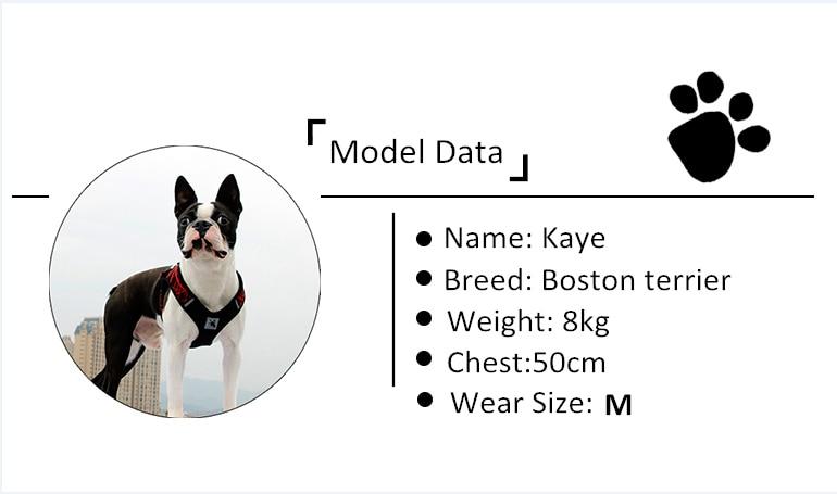 Reflective Dog Harness (30)