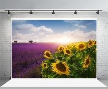 Laeacco Sunrise Lavenders Field Sunflowers Scenic Photography Backdrops Vinyl Backdrop Custom Photo Backgrounds For Photo Studio mysterious scenic backdrop h0559 10ft x20ft hand painted backdrops photography fondo fotografico backgrounds for photo studio