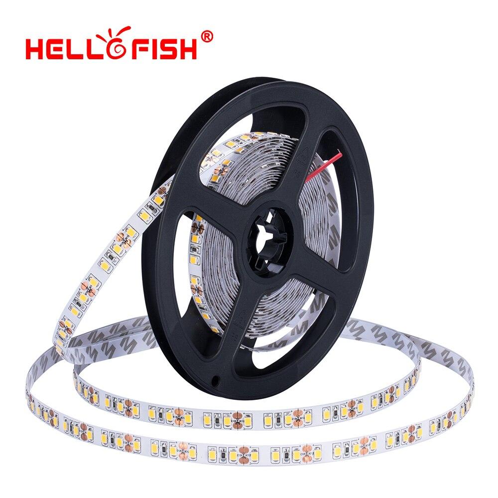 2835 Led Strip 5m 120 LED Light High Brightness CRI DC 12 V Flexible Light Stripe  Tape Lights & Lighting