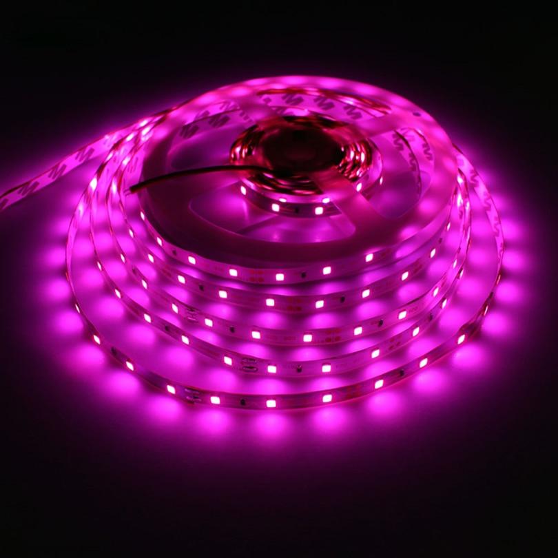 SMD3528 LED Strip 12V 60LEDs/m Neon Pink Flexible LED Strip Waterproof Romantic Living Room Decoration Home Diode Tape LED Light