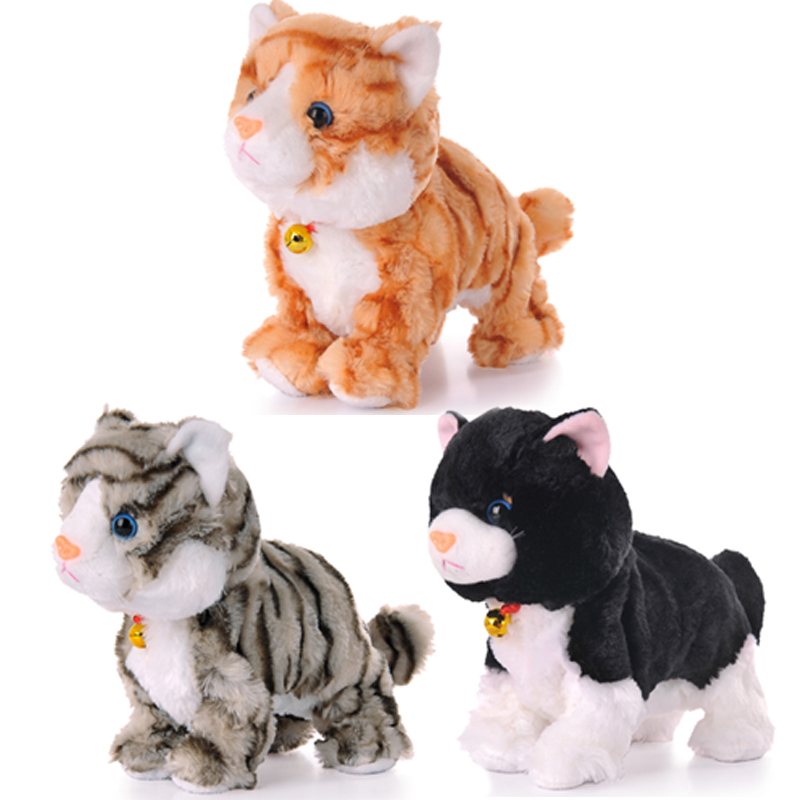 Best Electronic Toys For Cats