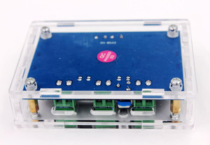 Image 5 - DC 12V 24V 100W TPA3116 DA MONO Channel เครื่องขยายเสียงดิจิตอลบอร์ดอะคริลิค