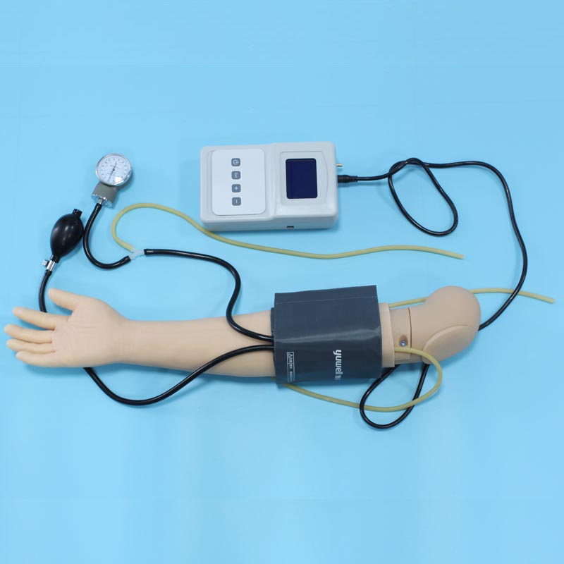BIX-HS7 Advanced Blood Pressure Measurement Training Simulator Nursing Model bix h2400 advanced full function nursing training manikin with blood pressure measure w194