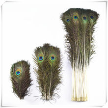 Real-Peacock-Feathers Crafts Plumes Decor-Room Wedding-Decoration Natural Wholesale