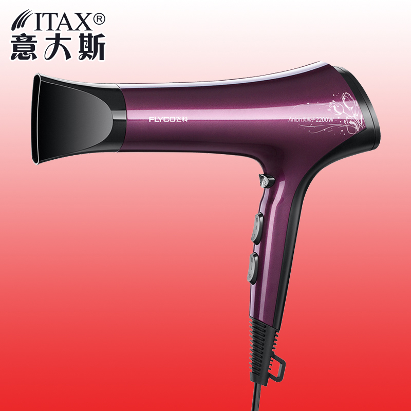 Electric Hair Dryer Styling Tools Blow Dryer Low Noise Hair Salon Hot Cold Wind 2000W Mx Power FH6273