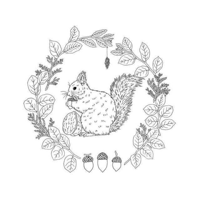 Tienda Online 96 páginas flores y pájaros paraíso libro para ...