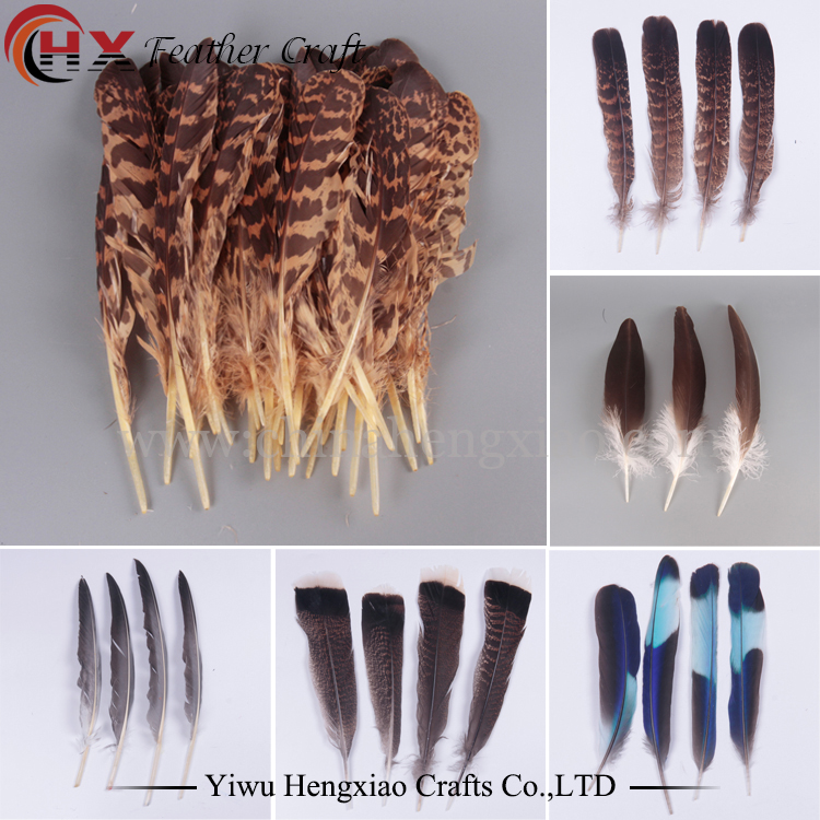 Wholesale 5-50pcs Precious 5-6inches Natural kingfisher Feathers DIY Decoration