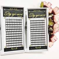3 Trays 5D Professional Individual Eyelashes Premade Fans False Fake Lashes Wimpers Volume Eyelashes Extensions Free