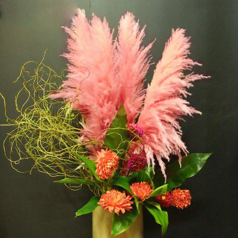New Rare Impressive Pink Pampas Grass Seeds Patio Home Garden Potted
