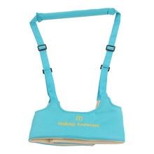 Adjustable Infant Walking Belt