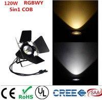 LED Par 120W COB RGBWA 5in1 RGBW 4in1 RGB 3in1 Warm White Cold White UV LED