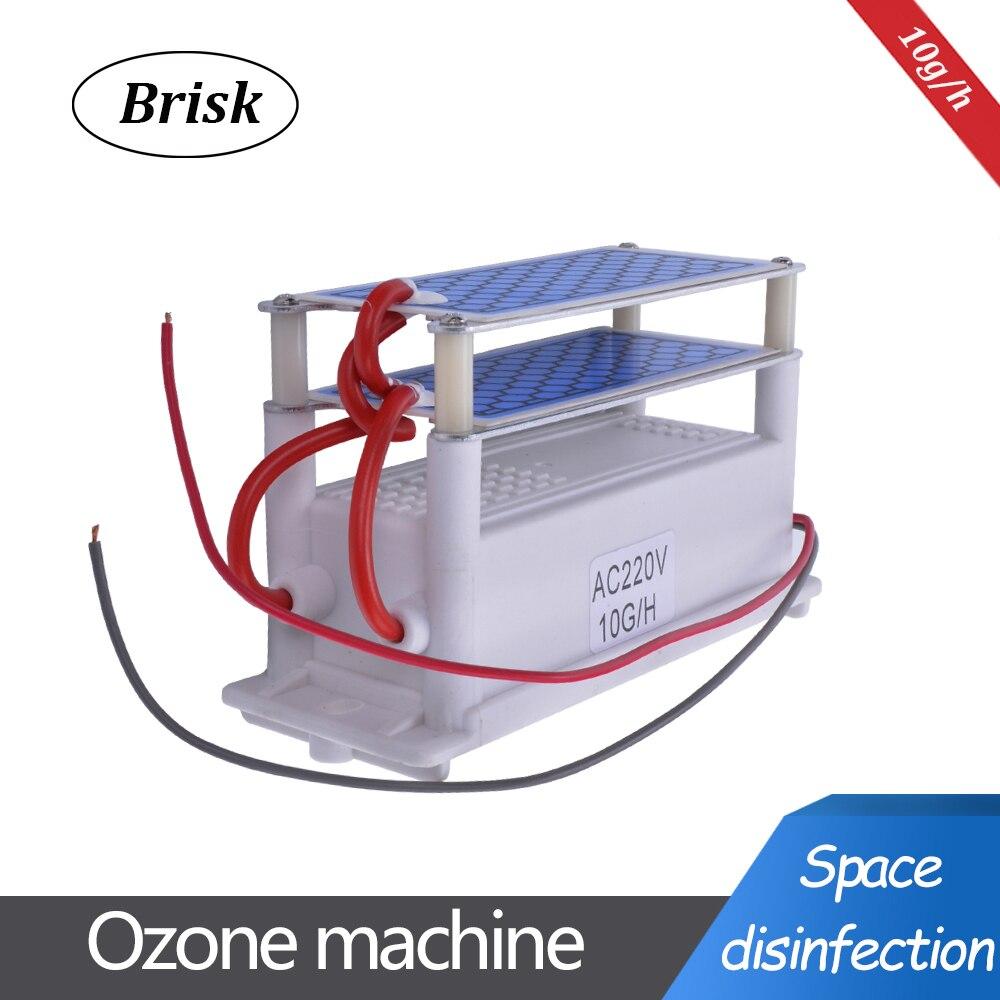 Brisk przenośny ceramiczny Generator ozonu podwójna zintegrowana płyta ceramiczna ozonizator woda powietrze części do oczyszczania powietrza 220V/110V 10g