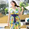 Swimwear Large Sizes Printed Swimming Dress For Woman Swimming Suit For Women One Piece Bathing Suit