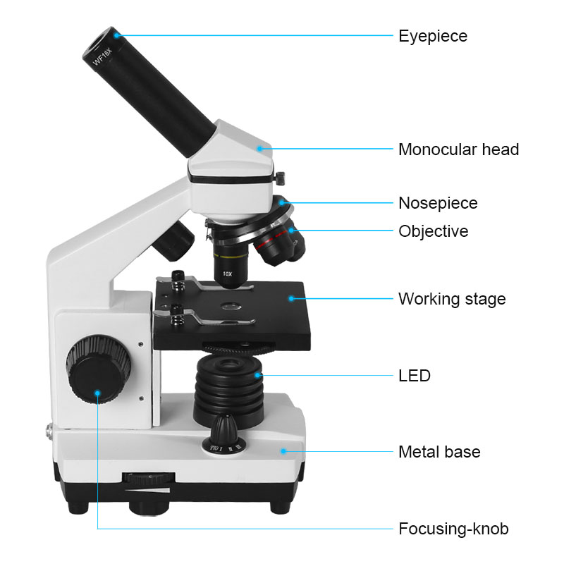 AOMEKIE Microscopio biologico professionale 64X-640X Up / Bottom LED - Strumenti di misura - Fotografia 3