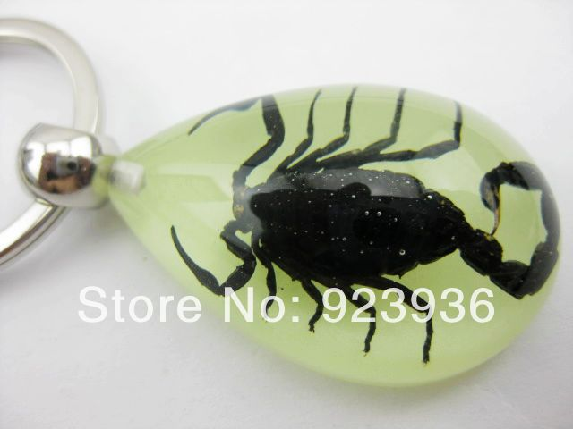 10 PCS Glow In The Dark Lucite MINI Style Teardrop Necklace Black Scorpion
