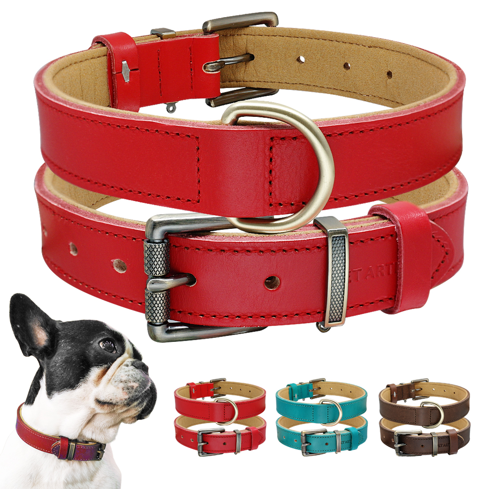 Luxury Real Leather Dog Collar Soft Padded Pet Collar